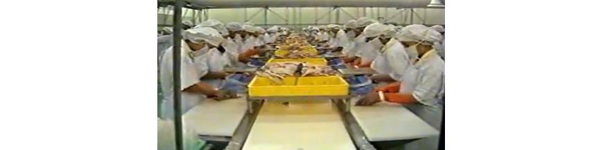 1.เขียงอุตสาหกรรมอาหาร เขียงแปรรูปอาหาร